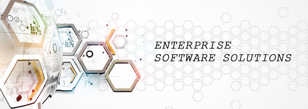 What's Included In Enterprise Software Solutions