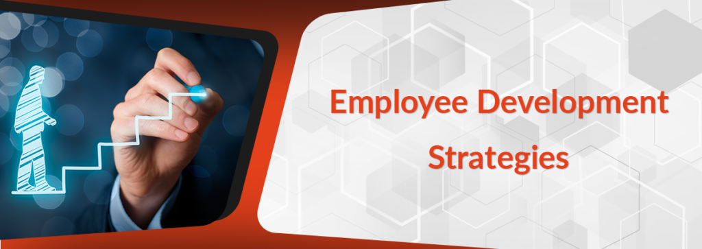 Employee Development Strategies That Actually Work