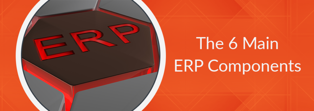 What are the 6 Main ERP Components?