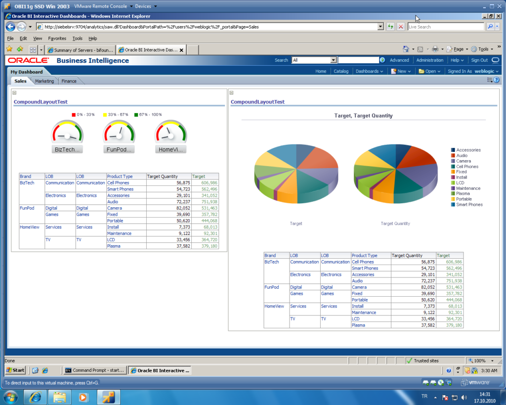 Oracle BI interface